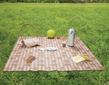 Resim Alas Piknik Örtüsü 140*160 Cm